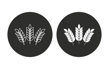 Gerste Vektor-Symbol. Illustration isoliert für Grafik und Web-Design. Standard-Bild - 60319170