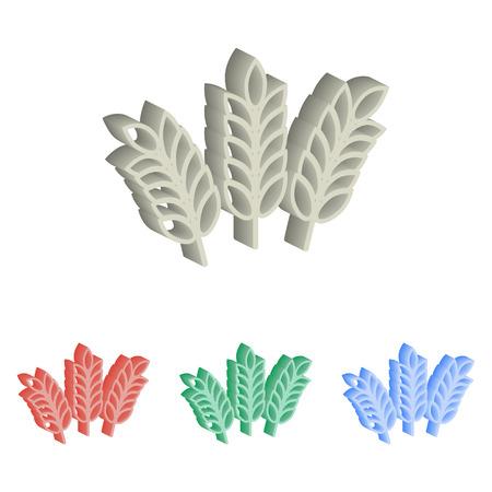 Barley isometric illustration.