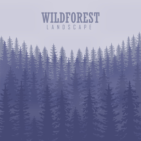 coniferous forest: Wild coniferous forest . Pine tree, landscape nature, wood natural panorama. Outdoor camping design template.