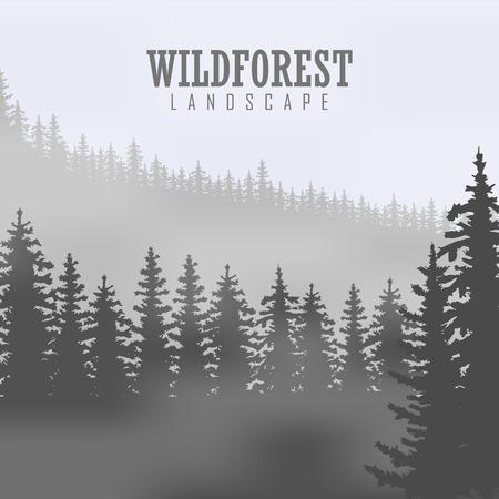 coniferous forest: Fondo del bosque de con�feras salvaje. pino, paisaje de la naturaleza, madera panorama natural. Plantilla de dise�o de campa�a al aire libre.