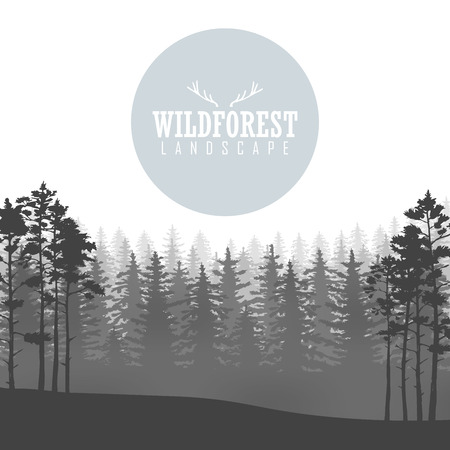Wild coniferous forest background. Pine tree, landscape nature, wood natural panorama. Outdoor camping design template. Vector illustration Stok Fotoğraf - 63487985