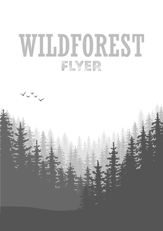 wild nature wood: Wild coniferous forest flyer background. Pine tree, landscape nature, wood natural panorama. Outdoor camping design template. Vector illustration Illustration