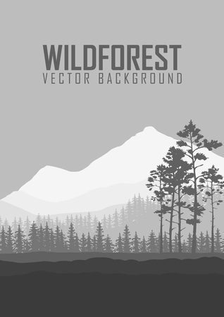 wild nature wood: Wild coniferous forest flyer background. Pine tree, landscape nature, wood natural panorama. Outdoor camping design template. Vector illustration. Illustration