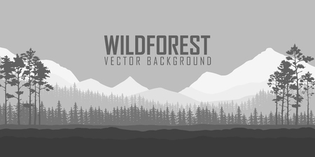 wild nature wood: Wild coniferous forest background. Pine tree, landscape nature, wood natural panorama. Outdoor camping design template. Vector illustration.