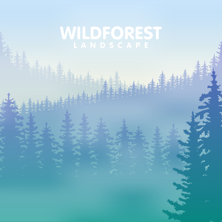 conifer: The forest with the rows of the evergreen trees in blue and green colors. Vector illustration.