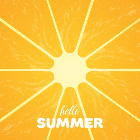 segmento: Pulpa anaranjada y texto del verano del hola. Vectores