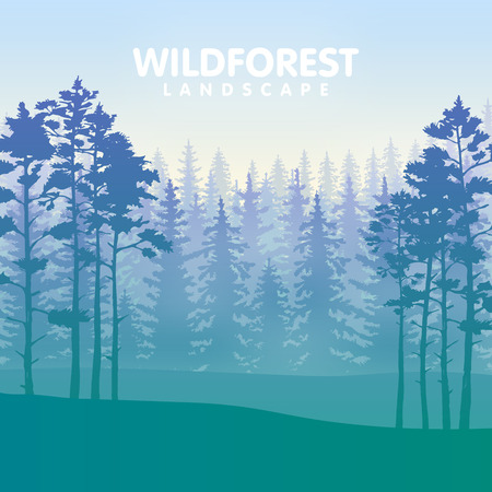 hiking: The forest with the rows of the evergreen trees in blue and green colors. Vector illustration.