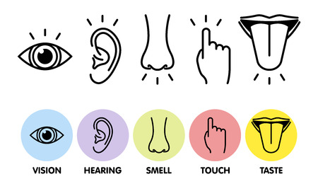 Icon set of five human senses: vision - eye , smell - nose , hearing - ear , touch - hand , taste - mouth with tongue . Simple line icons and color circles, vector illustration.