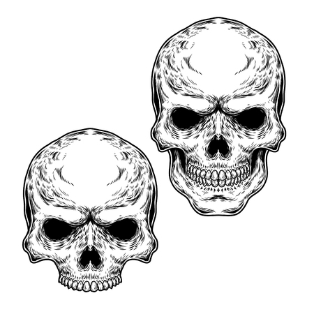 engraving print: Collection of vector illustrations of skulls, engraving. Print for T-shirts Illustration