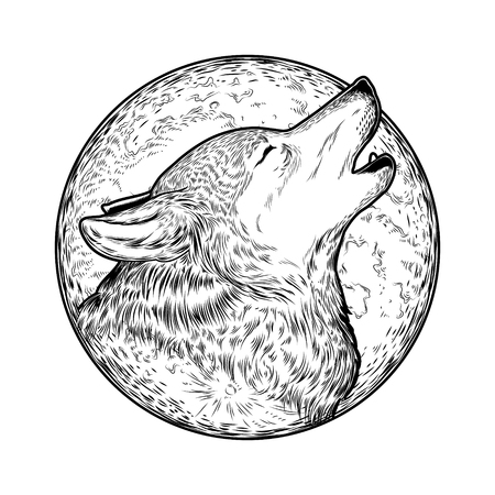 engraving print: Vector illustration of a howling wolf, engraving. Print for T-shirts.