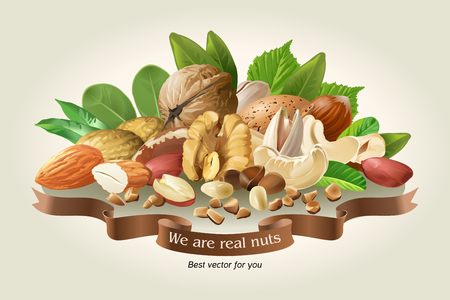 Vector illustration of a mix of different types of nuts on a light background