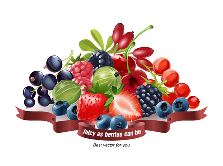 Vector illustration of a mix of fresh berries, strawberries, raspberries, blueberries, currants, gooseberries, blackberries, cherries, goji isolated on white background Illustration