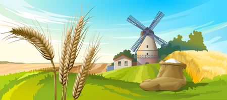 Vector illustration rural summer landscape with a windmill