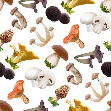 Vector naadloos patroon van verschillende soorten eetbare paddestoelen. Realistische stijl