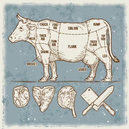 illustrazione vettoriale serie di tagli di carne bovina. schema del manifesto mucca Vintage.
