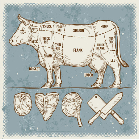 rump: Vector illustration set of cuttings of beef. Vintage poster cow scheme.