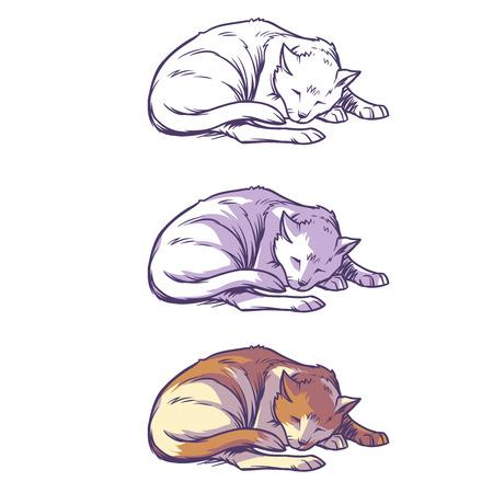 eyes looking down: Sketch cat sleeping curled up