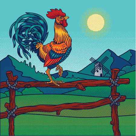 fowls: illustration of a rooster Stock Photo
