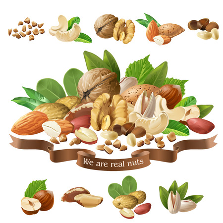 Vector illustration mix of different types nuts Stock Photo