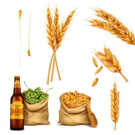 Vector set realistic icons canvas bags full of barley grains and hop cones, spikes and glass bottle of beer. The concept of brewing, craft beer Illustration