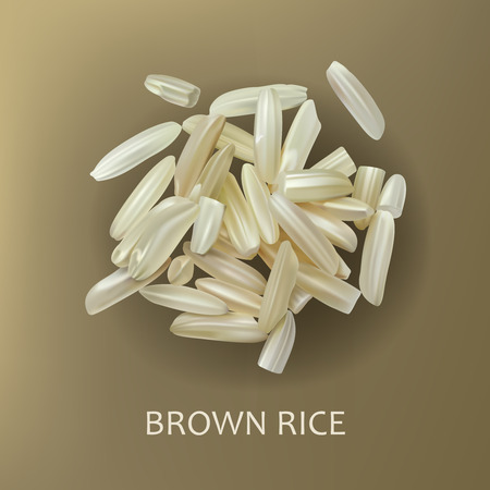 Grains of brown long grain rice, isolated on a brown background, realistic vector. Healthy diet, vegetarian food, design element