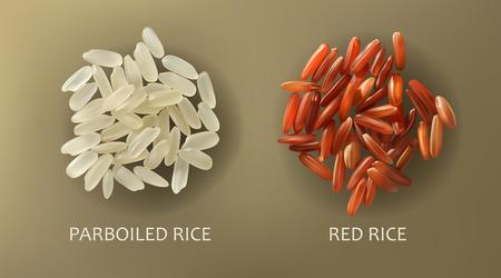 Deux poignées de riz cargo blanc étuvé et rouge, isolé sur un fond marron, vecteur réaliste. Alimentation saine, nourriture végétarienne, élément de conception Banque d'images - 92038473