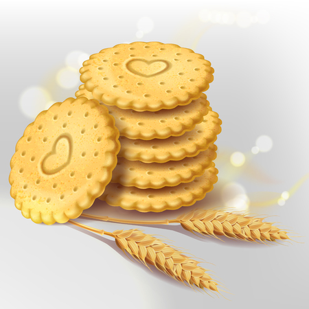 Stack of round biscuit cookies or cracker with heart ornament and wheat ears near them. Vector isolated on white background with light elements. Healthy sweets, whole wheat biscuit.