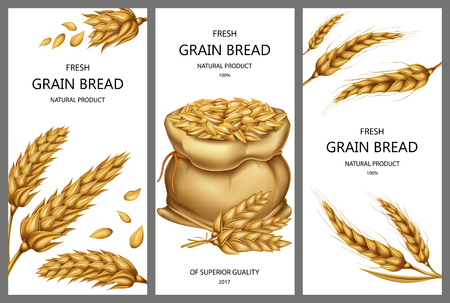 Vector realistic canvas sack filled with ripe cereals, dried wheat ears and peeled whole grains isolated on white background. Set of three vertical banners with design elements for bakery, product ad Vectores