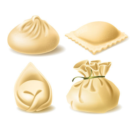 Set of different dumplings, wonton, tortellini, khinkali, ravioli, vector realistic illustration isolated on background. Traditional asian and european cuisine, dough stuffed with meat or vegetables
