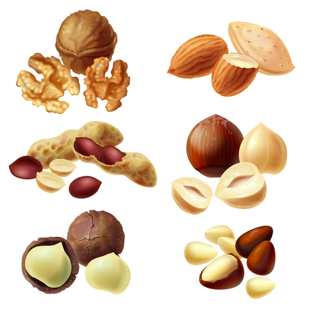 Vector 3d realistic set of various nuts, hazelnut, macadamia, peanut, almond, walnut, pine nuts, whole kernels and halves, cracked and peeled. Healthy organic diet product for vegans, vegetarians