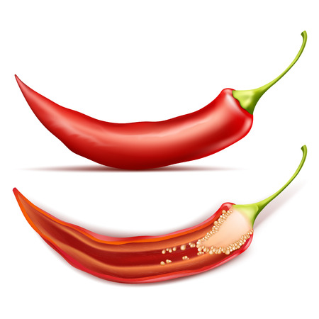 Vector realistic illustration of hot chili pepper, whole and half, isolated on background. Red pod of cayenne, traditional spicy seasoning for mexican cuisine, natural ripe vegetable for cooking