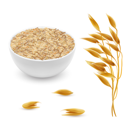Vector 3d realistic oat ears, grains with white bowl. Detailed cereal plant, agriculture organic crop. Flakes, oatmeal set isolated on white background 일러스트