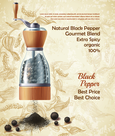 Vector banner with pepper mill, filled with black peppercorns on textured background. Natural ground spice, seasoning for eating. Vintage poster with botanical hand drawn sketch, mockup for advertising