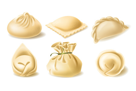 Set of different dumplings, pelmeni, wonton, tortellini, khinkali, manti, ravioli, vector realistic illustration. Traditional asian and european cuisine, dough stuffed with meat or vegetables  イラスト・ベクター素材
