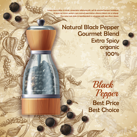 Vector banner with pepper mill, filled with black peppercorns on textured background. Natural spice, seasoning for eating. Vintage poster with botanical hand drawn sketch, mockup for advertising