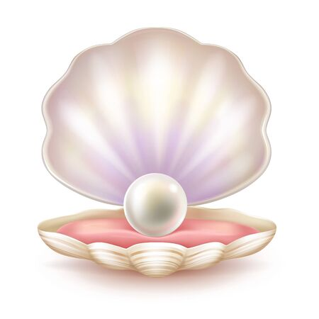 Perfect pearl lying on soft tissue of shelled mollusk realistic vector illustration isolated on white background. Rare natural jewel on velvet pillow in decorative case. Precious sea treasure concept Stock Illustratie