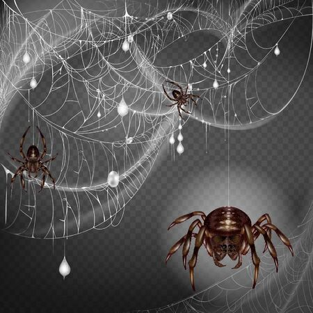 Nest of dangerous and scarifying spiders 3d realistic vector with poisonous big and small arthropods hanging on web string, climbing on lace with hunted and wrapped preys or egg cocoons illustration Çizim