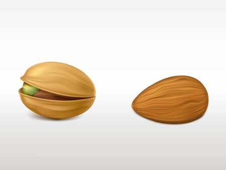 Set of realistic highly detailed nuts isolated on white background. Peeled almond and cracked pistachio with peel. Fresh product for healthy vegetarian nutrition design element. 3d vector illustration Ilustrace
