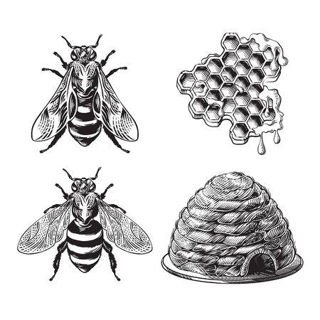 Ensemble d'abeilles, de guêpes, de nids d'abeilles et de dessin monochrome vintage de ruche, graphique de gravure, collection d'éléments de conception d'insectes dessinés à la main de rucher, tatouage de style rétro, illustration vectorielle en noir et blanc Vecteurs