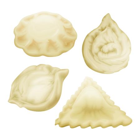 Vector realistic dumplings set. Vareniki pierogi xiao bao momo ravioli tortellini manti.