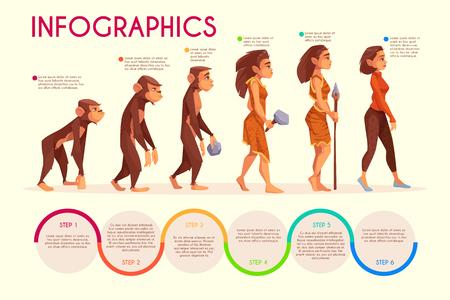 L'evoluzione delle donne stadi infografica vettoriale dei cartoni animati. Scimmia, primate femmina che cammina in posizione eretta, cacciatore di età preistorica con arma di pietra e donna moderna in illustrazione di abbigliamento casual sulla linea del tempo Vettoriali