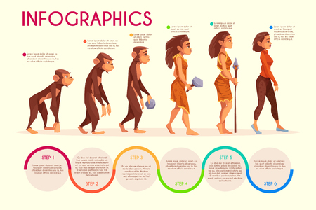 Womens evolution stages cartoon vector infographics. Monkey, female primate walking upright, prehistoric age hunter with stone weapon and modern woman in casual clothing illustration on time line