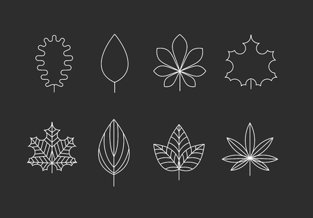 Outlined tree leaves icons - oak, maple, marijuana