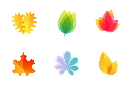 Vector tree leaves icons - oak, maple