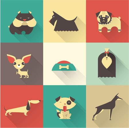 pug dog: Cute vector illustration of various dog breeds