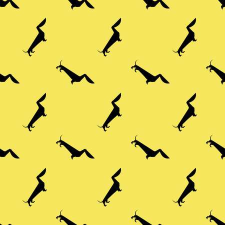 rabies: dog dachshund pattern