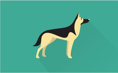 german shepherd: german shepherd vector flat illustration clean and simple style Illustration