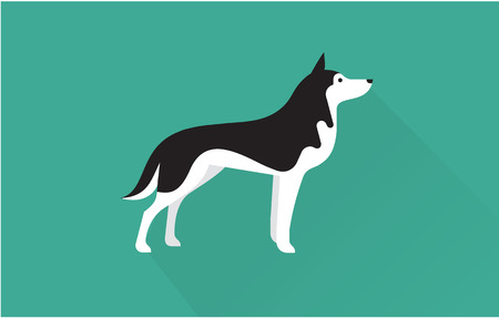 puppy: siberian husky vector flat illustration clean and simple style Illustration