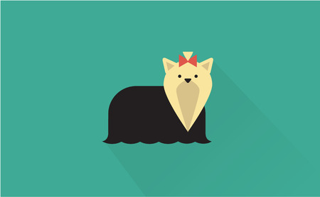yorkshire: yorkshire terrier vector flat illustration clean and simple style Illustration