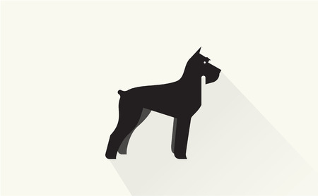 miniature: miniature schnauzer vector flat illustration clean and simple style Illustration